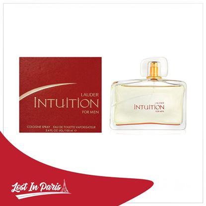 Picture of INTUTION