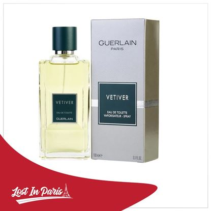 Picture of VETIVER